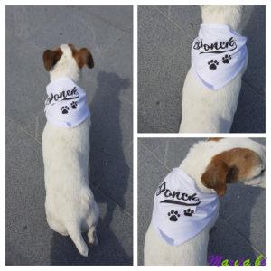 bandana voor hond bedrukt met naam
